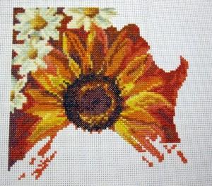 Sun Kissed Cross Stitch