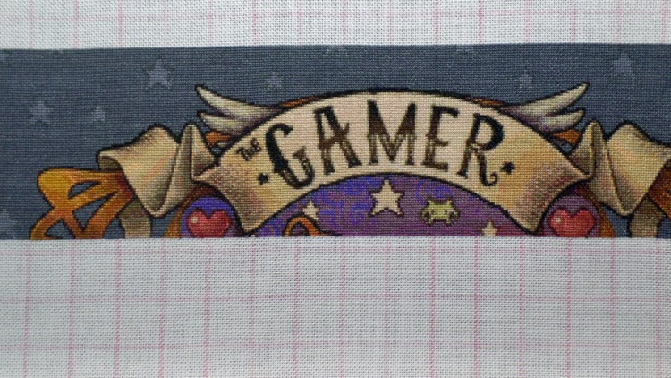 The Gamer 13th Jan
