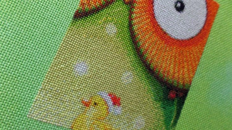 Santa Owl 30th Dec 2016 closeup