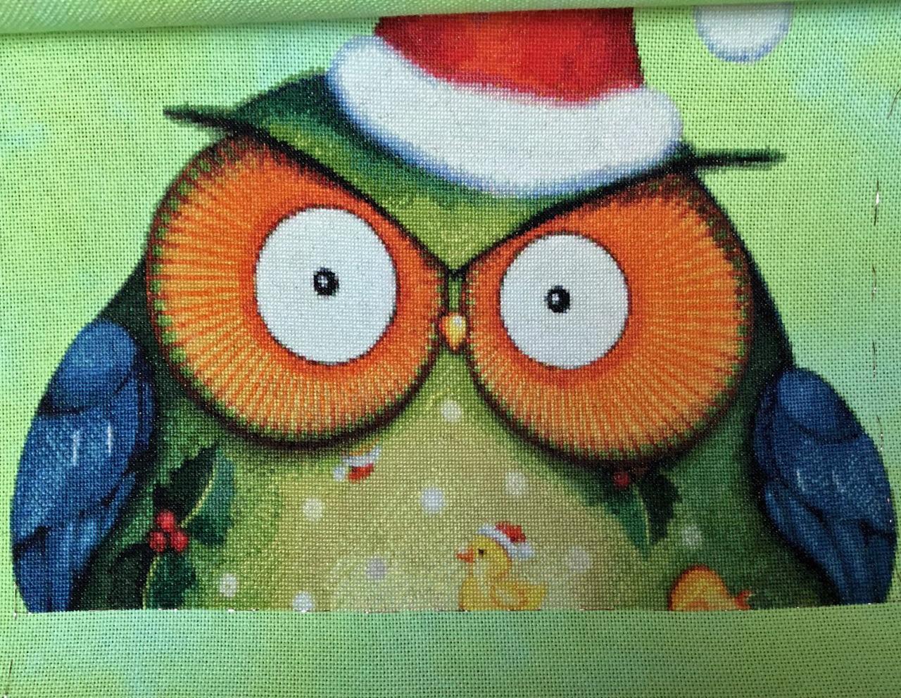 Santa Owl 6 pages